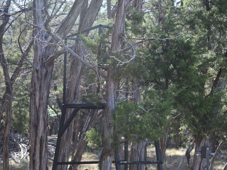 The Real Deal Stand For Texas Bowhunting