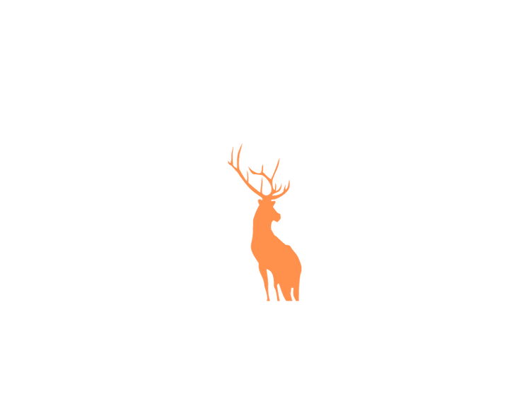 Trophy whitetail and exotic hunting ranc