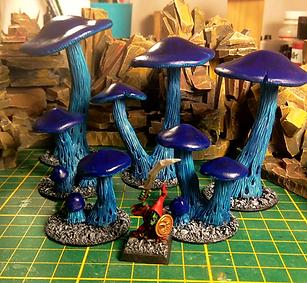 mushroom_edited.png