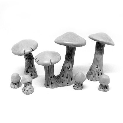Гигантские грибы S+M