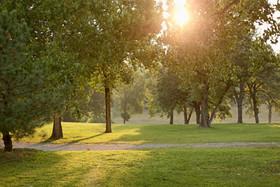 Five Oaks Grounds