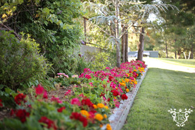 Landscaping by Lodge