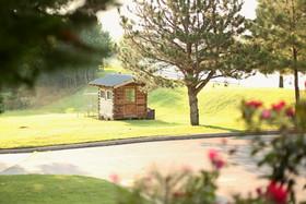 Five Oaks Chicken Cabin