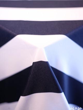Navy and White Cabana Stripe
