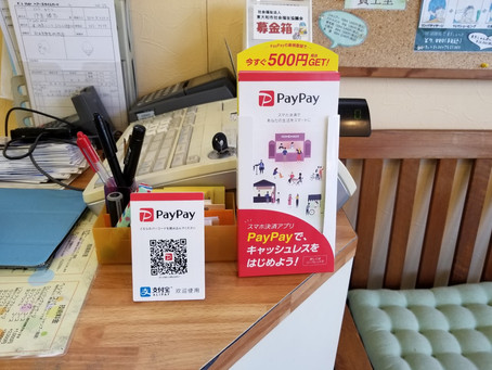 【PayPay 】