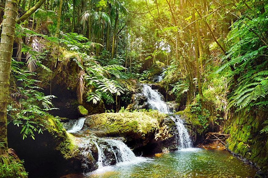 hawaii-big-island-of-hawaii-hawaii-tropi