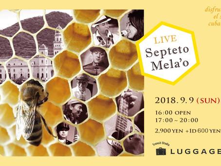 9/9 LIVE  Septeto Mela'o ~disfruten el son cubano!~[cuba]