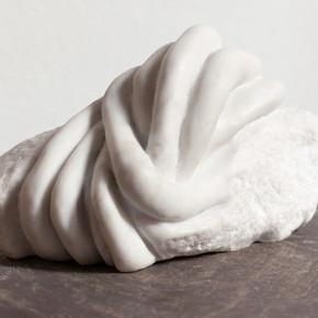 nodo bianco