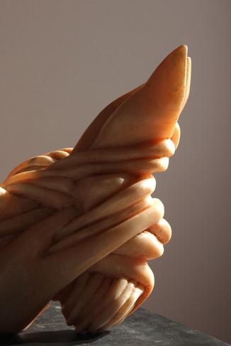 Slug Lungs 5.jpg