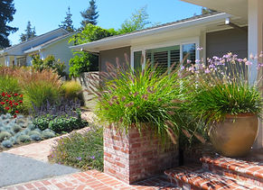water-wise garden, landscape, curb appeal, plants