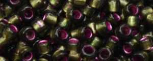 15-T2204 Raspberry Lined Olivine
