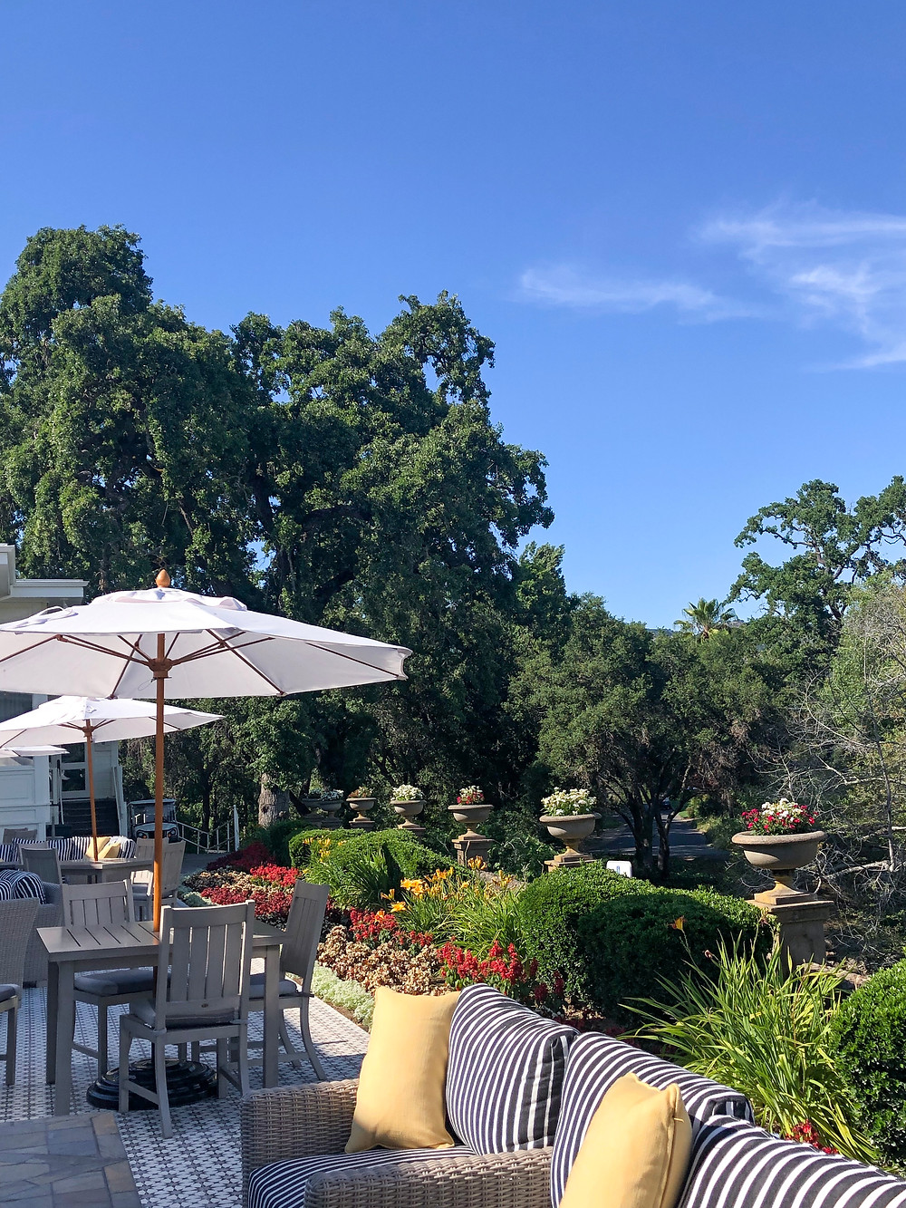 Looking to plan a honeymoon, weekend getaway, bachelorette party or a girls trip in Napa Valley? This ultimate restaurant and hotel guide is perfect for you! Click through to view more photos! #napavalley #foodieguide #michelinstar #luxuryresort