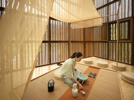 Bambu como material alternativo na Construção Civil
