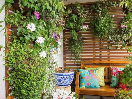 Aprenda a montar um jardim para seu apartamento