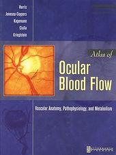 Dr. Ciulla's book cover, 2