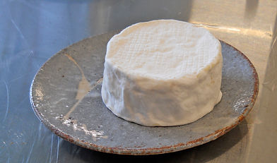 Camembert Cheese Red Gable Cheese Workshops