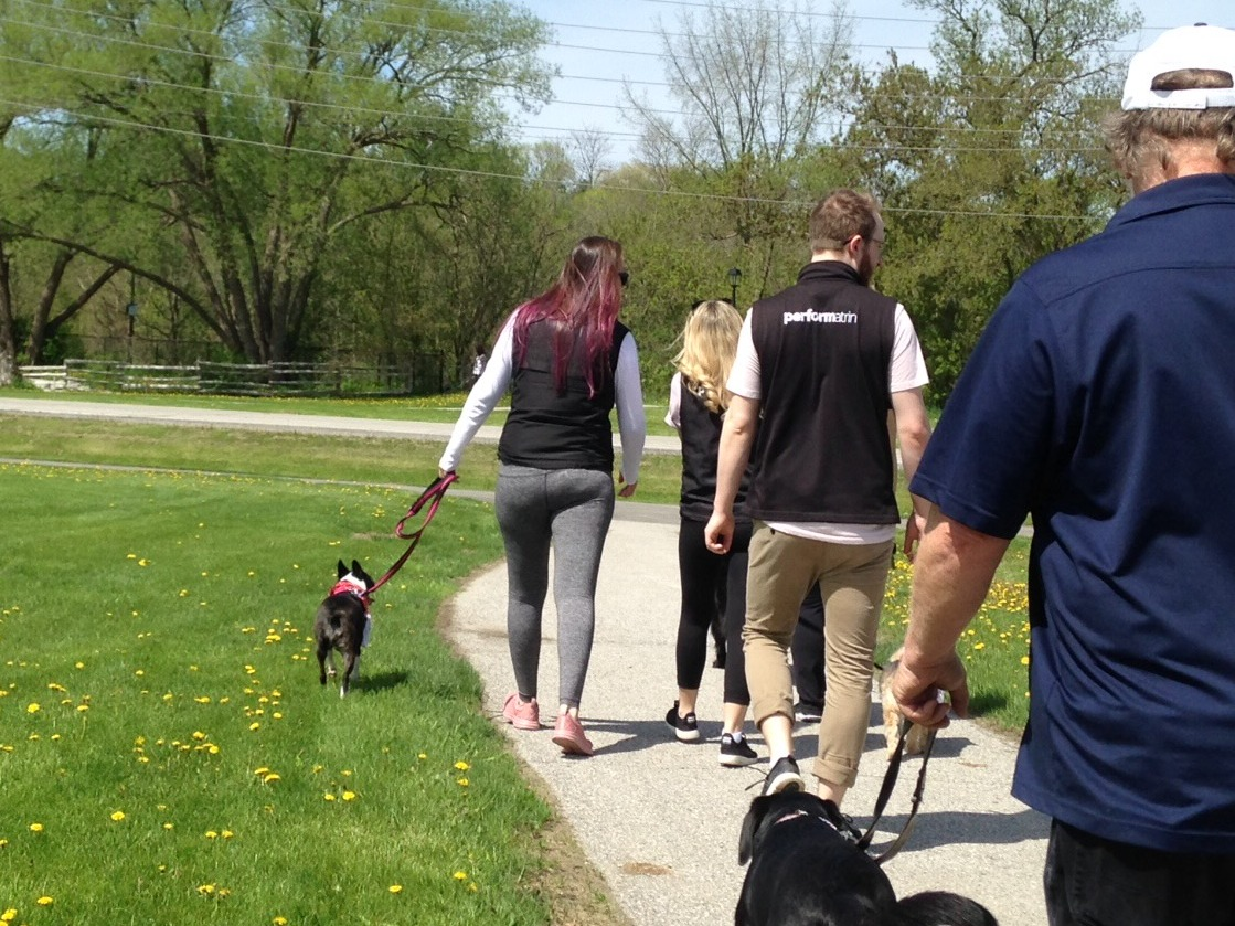 alt text Pet  Valu Walk for Dog Guides  Newmarket