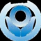 Lions International Diabetes Logo