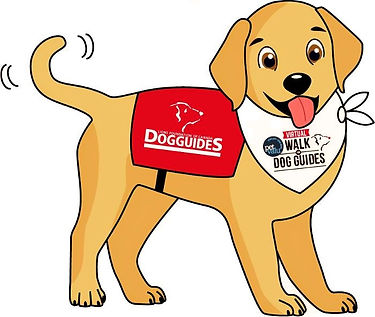 "Pet Valu Virtual Walk for Dog Guides' mascot is an animated yellow Labrador retriever wearing a red harness with a Lions Foundation of Canada Dog Guides logo on it and a Pet Valu Virtual Walk for Dog Guides bandana around its neck. The dog is saying ""Hello my name is Buddy!"""