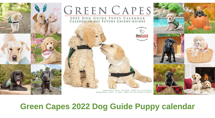 Lions-Foundation-of-Canada-Dog-Guide-Puppy-Calendar-1.png