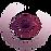 Lions International Vision Logo