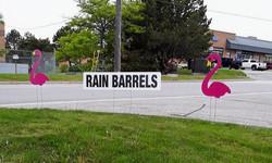 Rain Barrels Fundraiser with Pink Flamingos sign