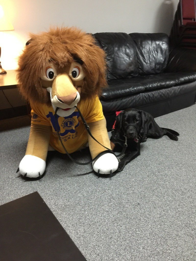 alt text Stuffed Lion with Guide Dog