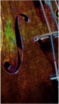 Viola, Fort Collins, Music lessons, Violin