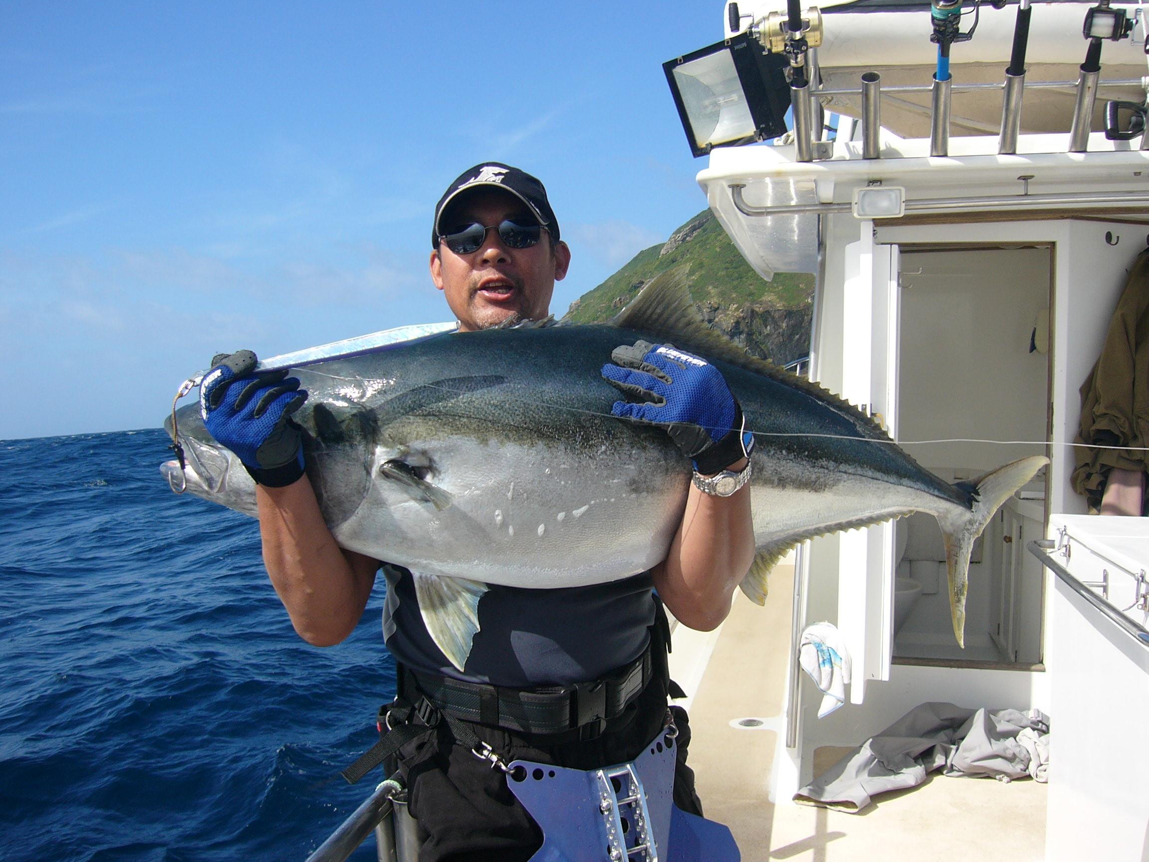 fat 34kg Kingfish