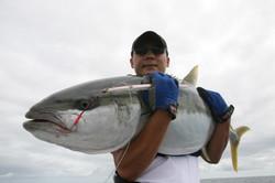 Monster Kingfish!