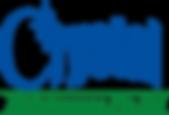 Crystal Maintenance Pte Ltd_Logo.png