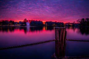 Sunrise Pond.jpg