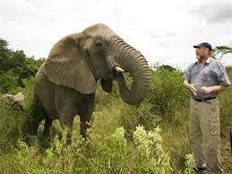 The Elephant Whisperer - Lawrence Anthony