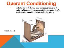 BF Skinner's Operant Conditioning