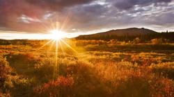 Sunrise desert