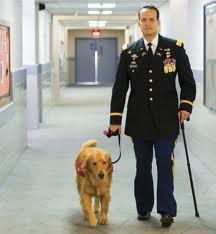 What is a Service Animal?
