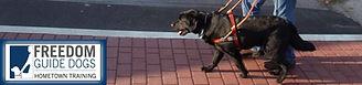 Freedom Guide Dogs Blind.jpg