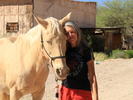 Horses and Healing - Introduction to Equine Therapy
