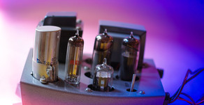 A Basic Amp Care Guide from the Sunflower Flower Repair Station!