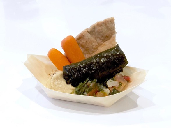 hummus + stuffed grape leaf + tabouli + carrot + pita