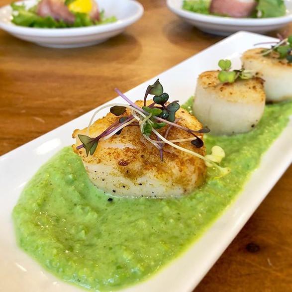 cumin dusted sea scallops w. pea puree