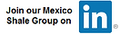 Mexico Shale Members