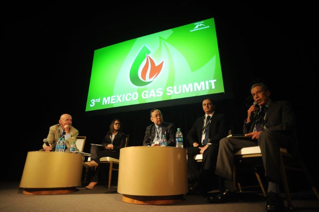 Mexico Oil and Gas Panel