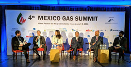 Natural Gas Commercialization Panel
