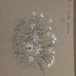 Jinning - Friday Afternoon Art Class.jpe