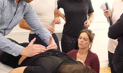 Formation massage fasciathérapie Montpellier formation trigger points formation massages m