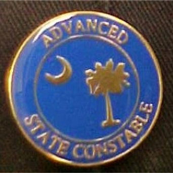 ADVANCED CONSTABLE PIN