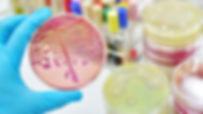 Microbiologia Clínica