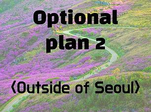 Optional plan 2