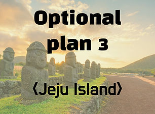 Optional plan 3
